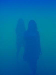 Im blauen Nebel