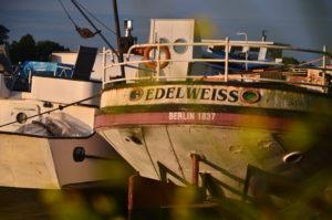 Das Nachbarschiff - wer will es haben?